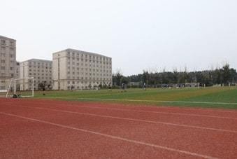 Track lari